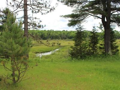 Residential Lots & Land For Sale: On Old Hwy 45 #39.5 ac