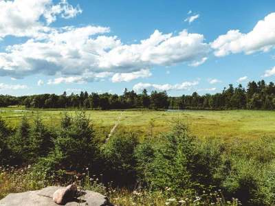 Residential Lots & Land For Sale: On Grundy Point Rd #Lot 2