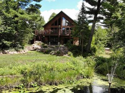 Tomahawk WI Single Family Home For Sale: $299,900