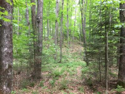 Residential Lots & Land For Sale: 7577 Jungle Lake Rd