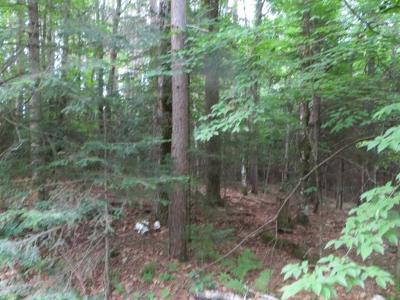 Residential Lots & Land For Sale: On Red Fox Dr #Lot 11
