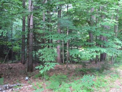 Residential Lots & Land For Sale: On Red Fox Dr #Lot 12