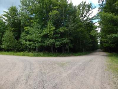 Crandon Residential Lots & Land For Sale: 5.25 Ac Canadian View Ln