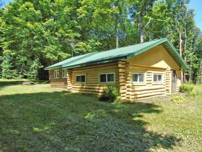 Minocqua Single Family Home For Sale: 8643 Squaw Lake Rd W