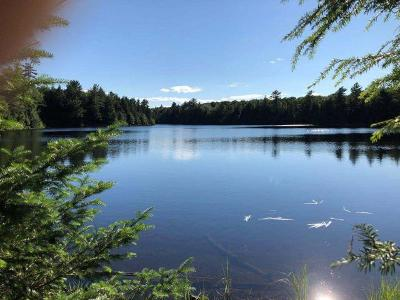 Residential Lots & Land For Sale: On Forest Rd 3210