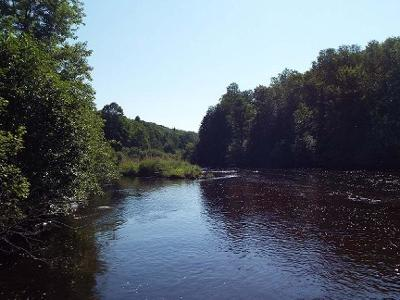 Pickerel Residential Lots & Land For Sale: Near Hwy 55 #0120865/