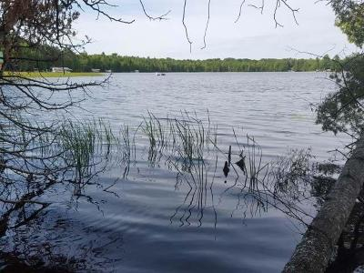 Three Lakes Residential Lots & Land For Sale: Lot 2 Woodland Ln