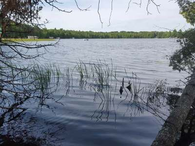 Three Lakes Residential Lots & Land For Sale: Off Woodland Ln