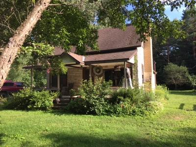 Three Lakes Single Family Home For Sale: 1693 Huron St