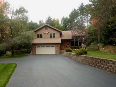 Eagle River WI Single Family Home For Sale: $359,000