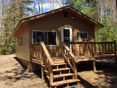 Forest County, Iron Wi County, Langlade County, Lincoln County, Oneida County, Vilas County Single Family Home For Sale: 6502 Hallman Rd