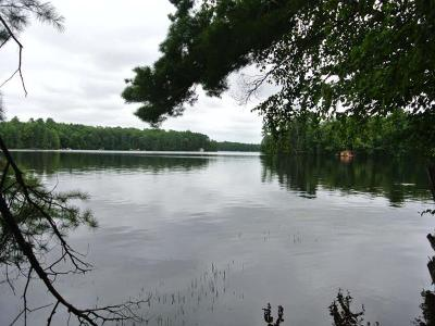 Three Lakes WI Residential Lots & Land For Sale: $199,900