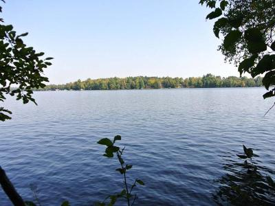 Three Lakes WI Residential Lots & Land For Sale: $239,500