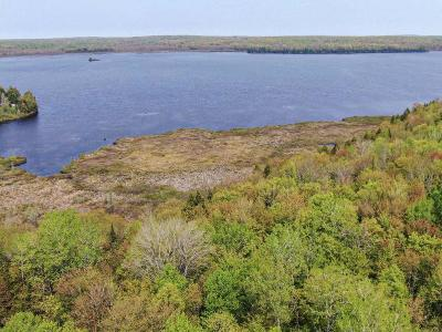 Residential Lots & Land For Sale: On Lakeshore Dr