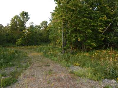 Residential Lots & Land For Sale: 20 Ac Cth A