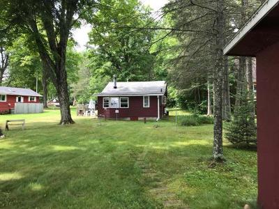 Langlade County, Forest County, Oneida County Single Family Home For Sale: 3916 Portwood Ln