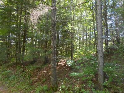 Pearson Residential Lots & Land For Sale: On Lake Agnes Rd