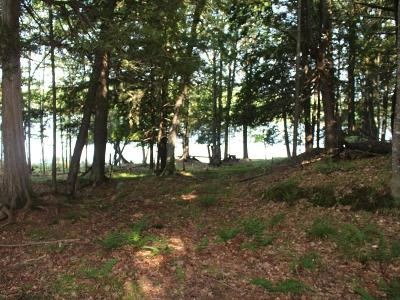 Residential Lots & Land For Sale: On Poor Lake Rd #Lot