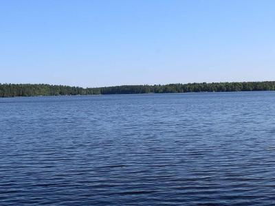 Three Lakes Residential Lots & Land For Sale: 1578 Naleid