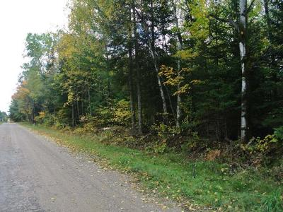 Three Lakes WI Residential Lots & Land For Sale: $39,900