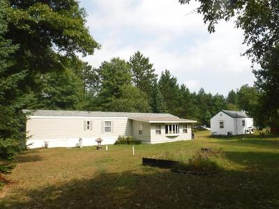 Oneida County, Lincoln County Single Family Home For Sale: 10386 South Rd