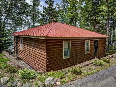 Forest County, Iron Wi County, Langlade County, Lincoln County, Oneida County, Vilas County Single Family Home For Sale: 2724 Hwy 17