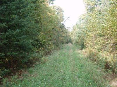 Butternut Residential Lots & Land For Sale: On Elmwood Rd
