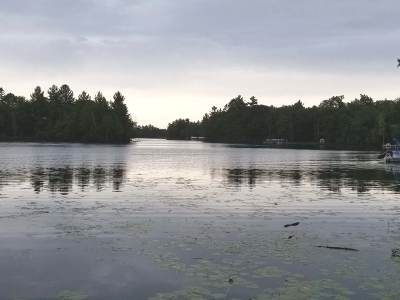 Residential Lots & Land For Sale: On Dollar Lake Rd E