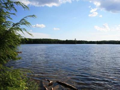 Residential Lots & Land For Sale: Near Cisco Lake Rd S