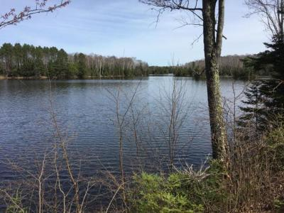 Residential Lots & Land For Sale: 3770 Blockhouse Lake Rd
