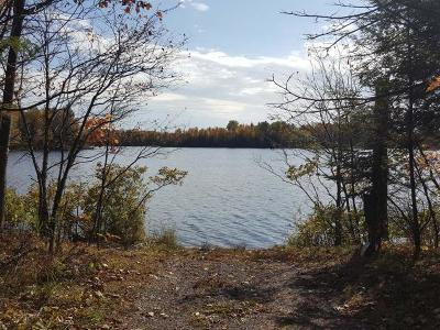 Forest County, Iron Wi County, Langlade County, Lincoln County, Oneida County, Vilas County Single Family Home For Sale: 5902 Scott Rd