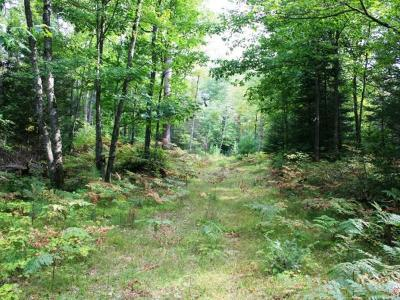 Residential Lots & Land For Sale: Near Crystal Lake Rd