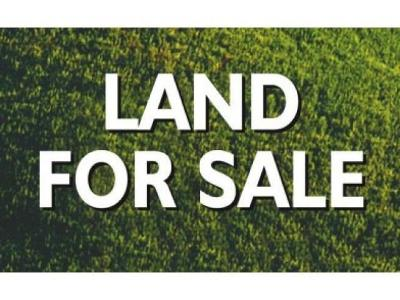 Merrill Residential Lots & Land For Sale: N2201 Fox Trail Rd