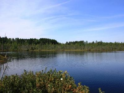 Minocqua WI Residential Lots & Land For Sale: $1,030,800
