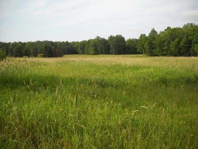 Residential Lots & Land For Sale: W985 Stony Rd