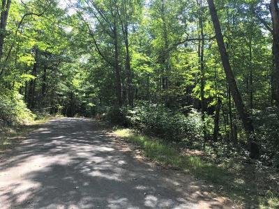 Three Lakes WI Residential Lots & Land For Sale: $30,915