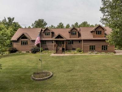 Minocqua Single Family Home For Sale: 8991 Curtis Lake Dr