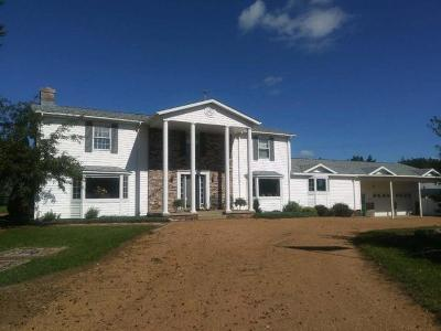 Antigo Single Family Home For Sale: W9120 Cherry Rd