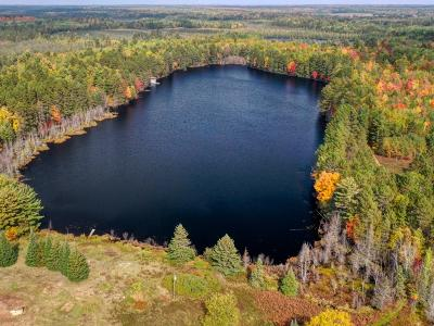 Eagle River WI Residential Lots & Land For Sale: $399,000