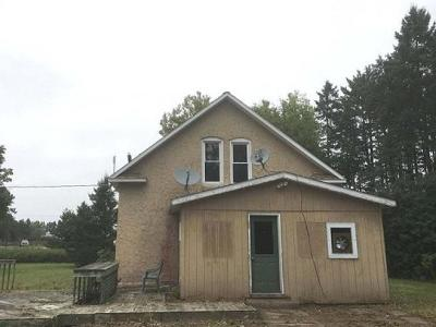 Aniwa, Elcho, Summit Lake, Bryant, Deerbrook, Elton, Lily, Pearson, Phlox, Pickerel, Polar, White Lake, Birnamwood Single Family Home For Sale: N4981 Washington St