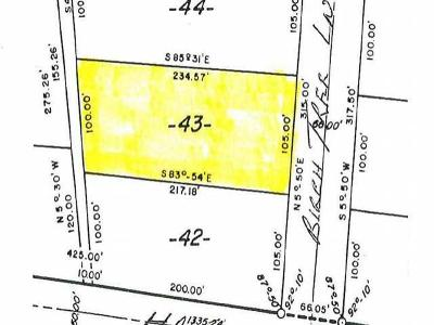 Residential Lots & Land For Sale: Lot 43 Birch Tree Ln