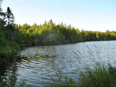 Eagle River WI Residential Lots & Land For Sale: $99,000