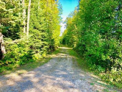 Crescent, Newbold, Pelican, Pine Lake, Rhinelander City, Sugar Camp, Woodboro Residential Lots & Land For Sale: Lot On Ripco Rd