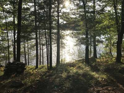 Arbor Vitae WI Residential Lots & Land For Sale: $49,900