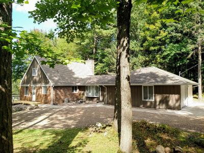 Price County Single Family Home For Sale: N10367 Solberg Lake Rd E