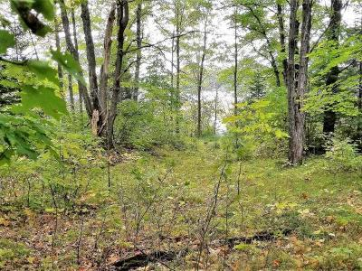 Crescent, Newbold, Pelican, Pine Lake, Rhinelander City, Sugar Camp, Woodboro Residential Lots & Land For Sale: On Buffalo Dr