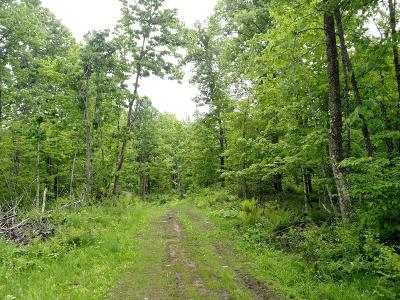 Park Falls Residential Lots & Land For Sale: Off Bass Lake Rd