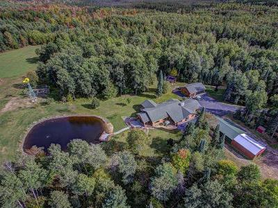 Lincoln County, Oneida County, Price County, Vilas County Single Family Home For Sale: N11392 Pine Tree Ln