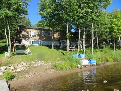 Forest County, Iron Wi County, Langlade County, Lincoln County, Oneida County, Vilas County Single Family Home For Sale: 10649 Cth B