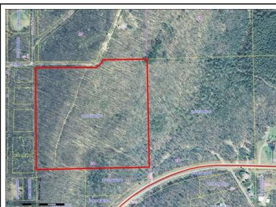 Residential Lots & Land For Sale: Off Glen St E #40 ACRES